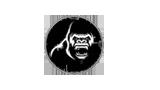 logo-kong